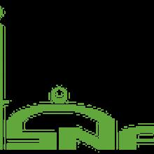 organizatinoal logo